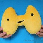 I Heart Guts - Donderende Schildklier (Thundering Thyroid)