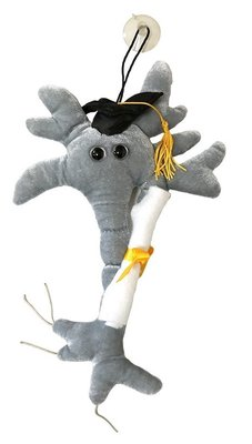 Giant Microbes XL Brain Cell Graduation met baret en diploma