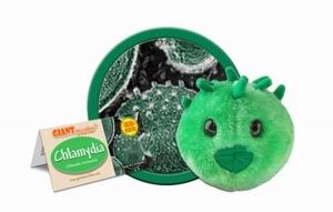 Giant Microbes Chlamydia