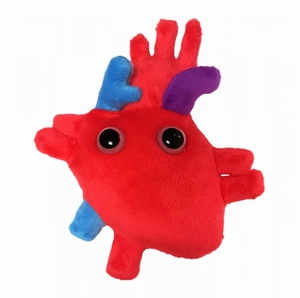 Giant Microbes Heart organ (hart orgaan)