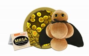 Giant Microbes MRSA