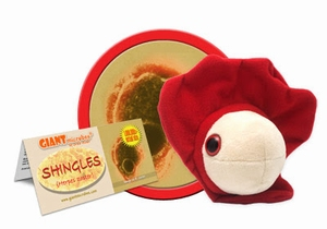 Giant Microbes Shingles (Gordelroos - Herpes zoster)