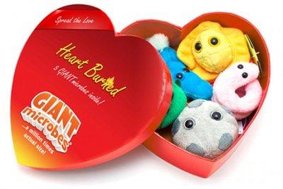 Giant Microbes Heartbox HB (mini microbe box)