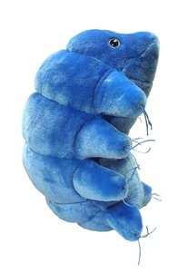 Gigantic Microbes Waterbear